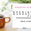 marketing plan webshop