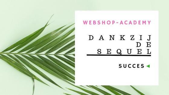 succesvolle webshop