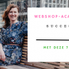 webshop succesvol maken