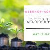 4 Duurzame marketingstrategieën voor webshops